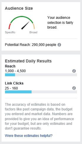 Audience size parameter- advertising on Instagram using Facebook Ads Manager