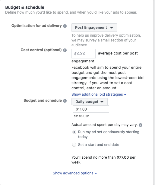 Budget & Scheduling; A Beginner's Guide to Advertising on Facebook